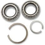 Crankcase Main Bearings - A-24729-74A