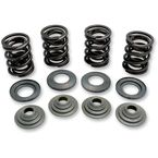 Valve Spring Kit - .348 in. Lift - 70-70140
