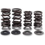 Lightweight Racing Valve Spring Kit  - 30-31600