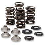 Lightweight Racing Valve Spring Kit  - 40-40660