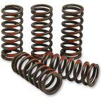 Clutch Springs  - CST13085