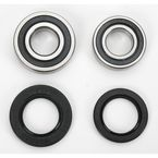 Rear Wheel Bearing Kit - PWRWK-Y08-421