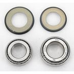 Steering Stem Bearings - 22-1009-A