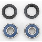 Front Wheel Bearing Kit - A25-1027