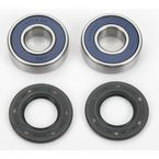 Front Wheel Bearing Kit - A25-1093