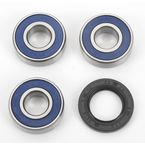 Rear Wheel Bearing Kit - A25-1189