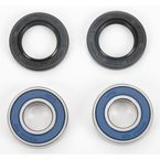 Front Wheel Bearing Kit - A25-1045
