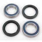 Rear Wheel Bearing Kit - A25-1132