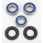 Rear Wheel Bearing Kit - A25-1262
