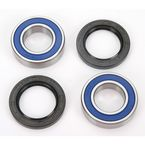 Dirt Bike Wheel Bearings