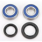 Rear Wheel Bearing Kit - A25-1275