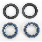 Rear Wheel Bearing Kit - A251329