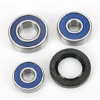 Rear Wheel Bearing Kit - A25-1400