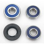 Rear Wheel Bearing and Seal Kit - 25-1494