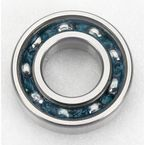 25x52x15mm Bearing - 6205RS