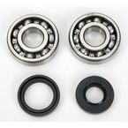 Crank Bearing/Seal Kit - A24-1008