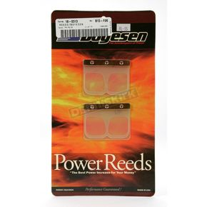 Boyesen Power Reeds for RL Rad Valves - RL-15