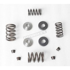 Kibblewhite Precision Machining Engine Spring Kit - 80-8000