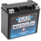 Premium Performance 12-Volt AGM Battery - 2113-0324