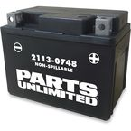AGM Maintenance-Free Battery - 2113-0748