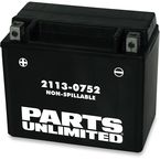 AGM Maintenance-Free Battery - 2113-0752