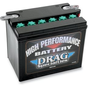 High Performance 12-Volt Lead Acid Battery - 2113-0008