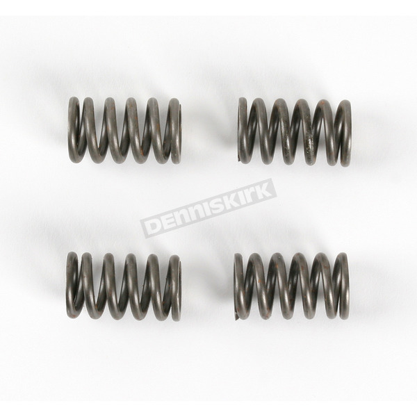 Moose Clutch Springs - 1131-0713