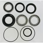 Rear Wheel Bearing Kit - PWRWK-H29-003