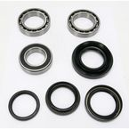 Rear Wheel Bearing Kit - PWRWK-H30-003