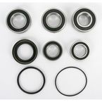 Rear Wheel Bearing and Seal Kit - PWRWS-H71-000