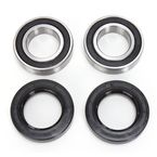 Rear Wheel Bearing Kit - PWRWK-C03-000