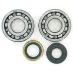 Crank Bearing/Seal Kit - 0924-0230