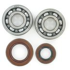 Main Bearing and Seal Kit - K064