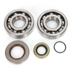 Crank Bearing and Seal Kit - 0924-0289
