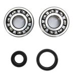 Crank Bearing and Seal Kit  - 23.CBS32099