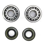Crank Bearing and Seal Kit  - 23.CBS41088