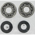 Crank Bearing/Seal Kit - A24-1006