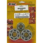 Main Bearing and Seal Kit - K006