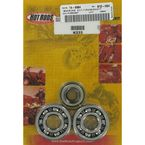 Main Bearing and Seal Kit - K233