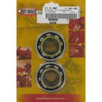Main Bearing and Seal Kit - K238
