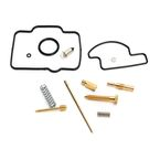 Carburetor Repair Kit - 1003-0431