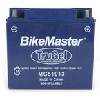 TruGel 12-Volt Battery - 780554