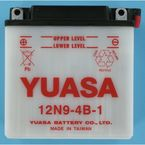 Conventional 12-Volt Battery - 12N9-4B-1