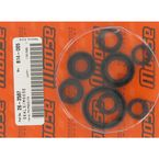 Oil Seal Set - M822175