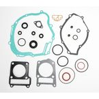 Complete Gasket Set With Oil Seals - 0934-0490