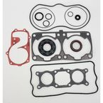 2 Cylinder Engine Complete Gasket Set - 711306