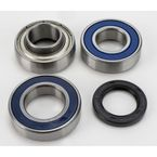 Jackshaft Bearing and Seal Kit - 14-1043