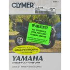 Yamaha Repair Manual - M489-2