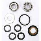 Steering Stem Bearing Kit - PWSSK-G01-001