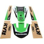 Kawasaki Graphic Trim Kit - 19-50130